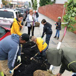 tree-planting-5-square